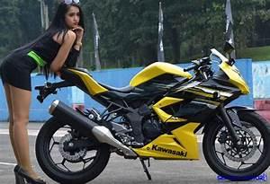 Kawasaki Ninja Rr Mono  Motor Racing Berbodi Ramping