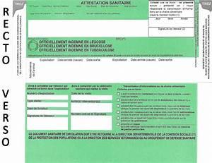 Carte Verte Assurance : asda et ica 29 mars 2013 gds creuse ~ Gottalentnigeria.com Avis de Voitures