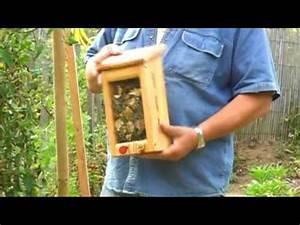 Abri à Insectes : abri insectes youtube ~ Premium-room.com Idées de Décoration