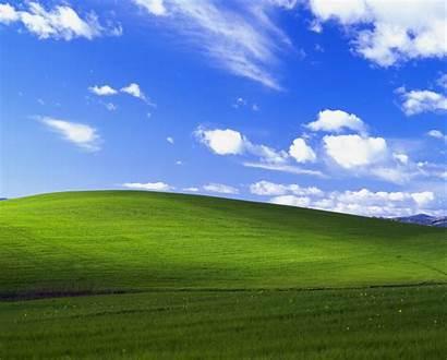 Bliss Xp Windows Background Desktop Classico Sfondo