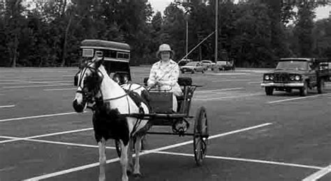granite state carriage driving and horseback club