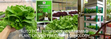 Grow Lights For Indoor Plants Singapore by Singapore Hydroponics Store Home Farming