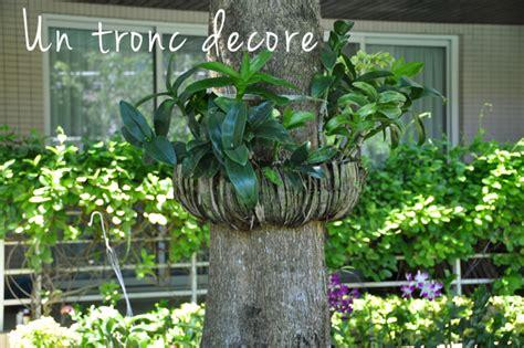 decoration tronc d arbre cobtsa