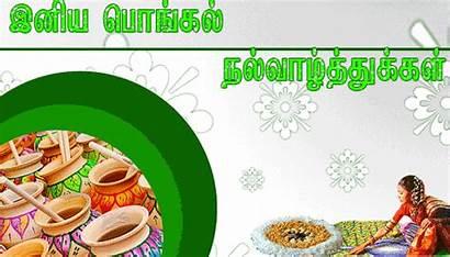 Pongal Greetings Tamil Wishes Happy Rangoli Kolam