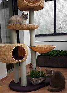 More For Cats Kratzbaum : 43 best moda images on pinterest cat scratcher cat trees and safari ~ Whattoseeinmadrid.com Haus und Dekorationen