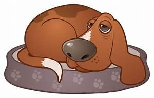 cartoon hound dogs | Adultcartoon.co
