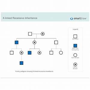 X Linked Recessive Inheritance