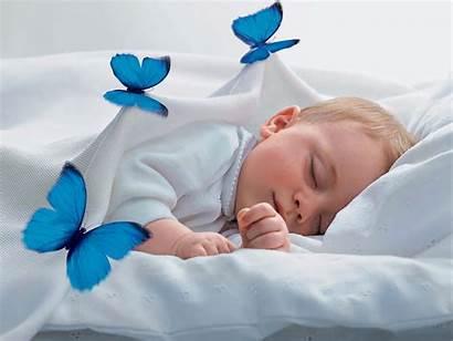 Sleep Dream Child Butterfly Sleeping Sweet Angel