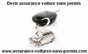 Assurance En Ligne Voiture : devis assurance auto sans permis en ligne ~ Medecine-chirurgie-esthetiques.com Avis de Voitures