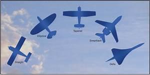 Wing Planform | Long Ca