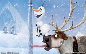 Olaf and Sven - Frozen Wallpaper (1300x814) (163945)