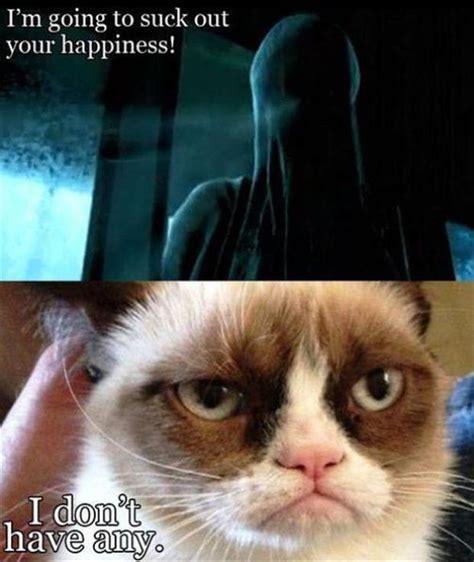Grumpy Cat Memes Funny - harry potter dementors grumpy cat funny pictures dump a day