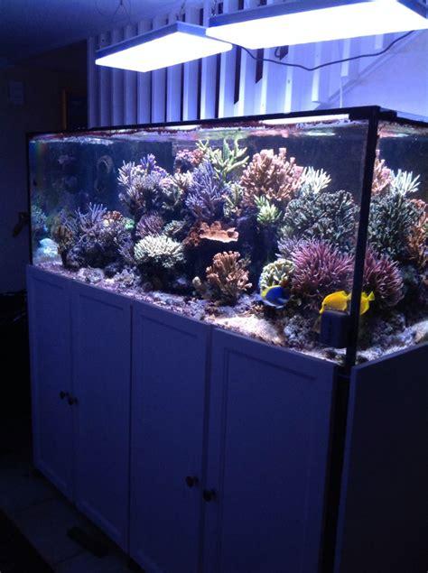 atlantik vb dual diode pendants aquarium led lightingorphek