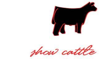 Show Cattle Logo Designs