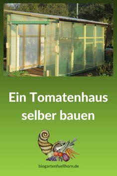 was kann in ein gewächshaus pflanzen die 7 besten bilder tomatenhaus bauen in 2017 garten gew 228 chshaus kleine g 228 rten und garten