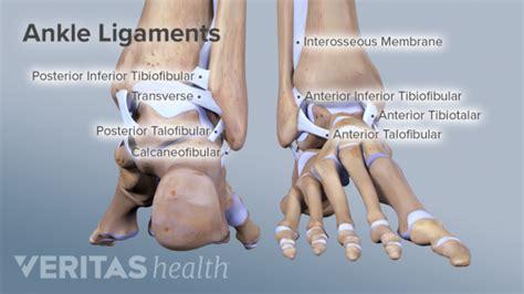 Orthopaedic & Neurosurgery Specialists