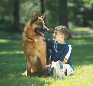 friendly pet boundaries coupons near me in woodbine 8coupons With dog friendly stores near me