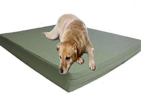 orthopedic pet bed with bolster large orthopedic beds doherty house best