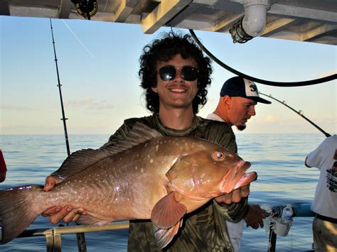 florida grouper targeting central
