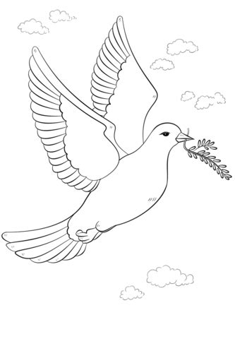Peace Dove with Olive Branch coloring page from Doves
