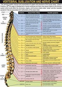 Chart Body Location Nerve Chart Chiropractors Spokane Wa Salina Family