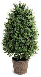 boxwood bush contemporary artificial flowers plants and trees by new growth designs