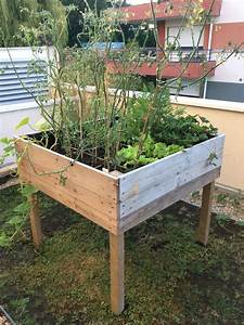 Bac En Bois Pour Jardin : ides de fabriquer un bac potager avec des palettes galerie dimages ~ Melissatoandfro.com Idées de Décoration