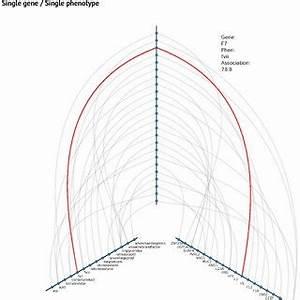 (PDF) Canonical Correlation Analysis for Gene-Based ...