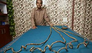 World's Longest Fingernails: Guinness World Records 2016 ...