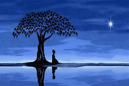 Meditation Tree Spiritual Sadhguru Moon Isha Guided