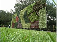 FileVertical Garden from Lalbagh flower show Aug 2013