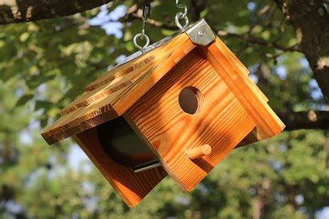 wooden bird box easy diy birdhouse plans patterns