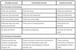 Ncert Solution Class 9th Science Chapter 6  Tissues  U00bb Dev