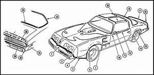 81 pontiac firebird vacuum diagram pontiac auto wiring With 1967 pontiac firebird vacuum diagram