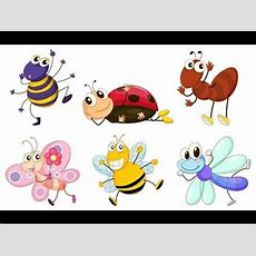 Insects Kids Learning With English Subtitles Youtube
