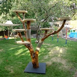 More For Cats Kratzbaum : cat tree diy branch homemade for cats pinteres ~ Whattoseeinmadrid.com Haus und Dekorationen