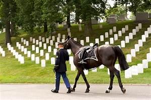 Arlington Cemetery Quotes. QuotesGram