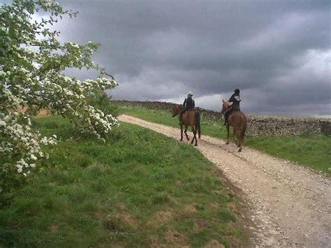 boltby trekking pony thirsk england yorkshire north tripadvisor go