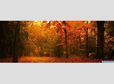 golden autumn park Facebook Cover timeline photo banner for fb