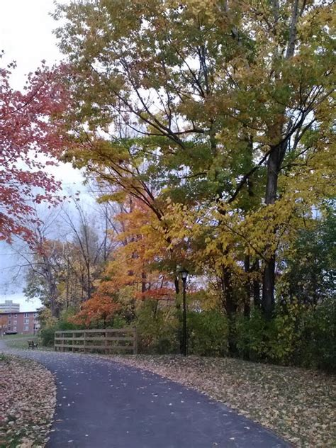 in living color plattsburgh ny the saranac river trail on an autumn sunday afternoon at