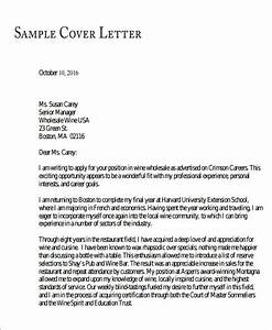 Free 8 Medical School Recommendation Letter Templates In
