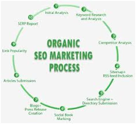 Organic Search Engine Optimisation - organic search engine optimization