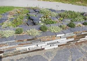 Gestaltung Kleiner Steingarten : gestaltung ein kleiner steingarten an zwei im spitzen winkel zulaufende wege ~ Markanthonyermac.com Haus und Dekorationen