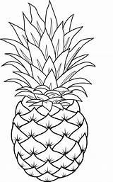 Coloring Pineapple Pineapples Sheets Frutas Dibujos Pina Popular Gravado Vidrio Bordado Fruta Pintar Colorear Pintura Tela Fruits sketch template