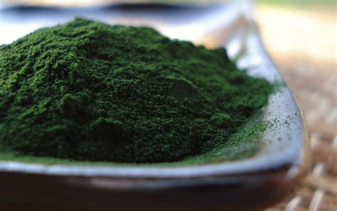 food  life chlorella  superfood  supports liver