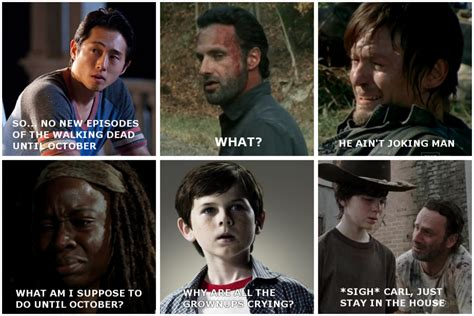New Walking Dead Memes - funny twd gifs memes and general media part 2 page 34