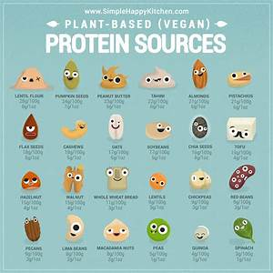U0026quot But Where Do You Get Your Protein   U0026quot  Vegan Food Has So
