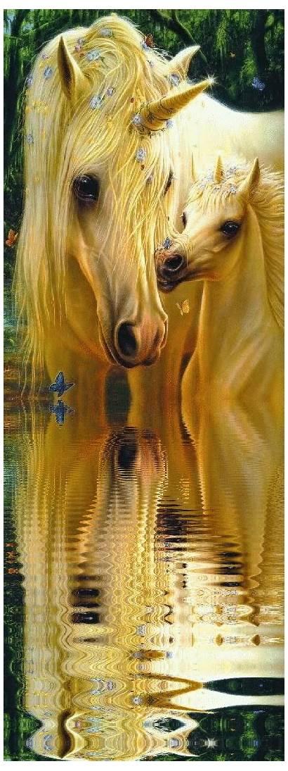 Unicorn Pegasus Fantasy Fairies Unicorns Magical Mermaids