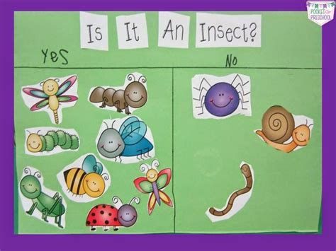 199 Best Insect Preschool Theme Images On Pinterest