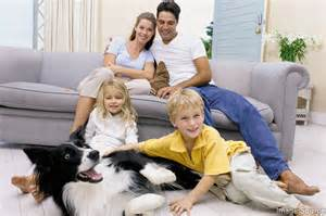 flip sofa get your carpets and upholstery cleaned by a professional jasper pickens county ga